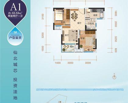 江汉之星1#楼A1户型63.53㎡