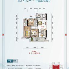 云梦碧桂园·楚云台2#楼YJ105户型图