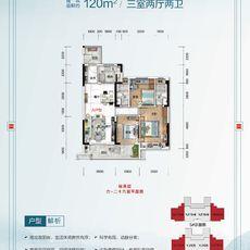 云梦碧桂园·楚云台2#/5#楼YJ115-A户型图