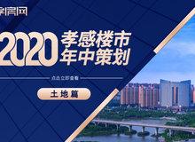 2020半年报:孝感土地市场成交7宗地