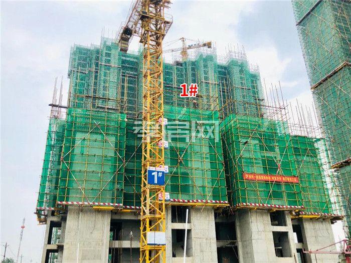鼎觀世界三期紅堡7月進度:2/3#樓已封頂