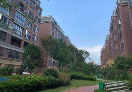 新城一号 新街 毛坯 小三房 楼层好视野好 买了就可装修
