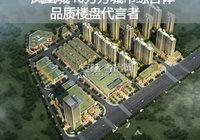 凤凰城40万方城市综合体 品质楼盘代言者