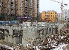 瑞丰国际城十一月份工程进度
