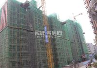 瑞丰国际城2017年3月份工程进度