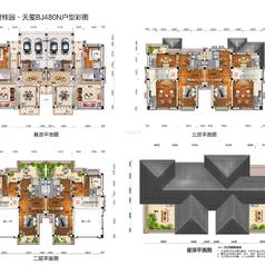 应城应城碧桂园·天玺天玺一期别墅BJ480户型彩图