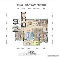 碧桂园·珑悦--YJ260偶数层