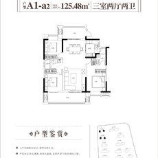 蓝悦·满庭春A1-a2户型图