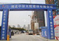 九烨·鼎观世界三期红堡3月进度:9#楼已建至11层