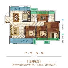 楚霖·鼎观世界五期丨紫境6#楼D户型户型图