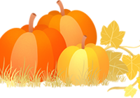 中伦礼献 感恩回馈,感恩节正确的打开方式