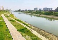 碧水园·花畔里丨一湾河景悠悠,沿岸绿意盎然,24h亲水生活