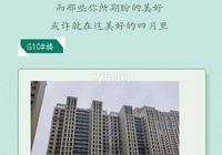 新城悅雋4月進度:G10/G11#外墻涂料完成60%