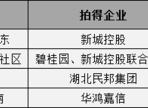 孝感东城区 这些新项目单价或超1万!
